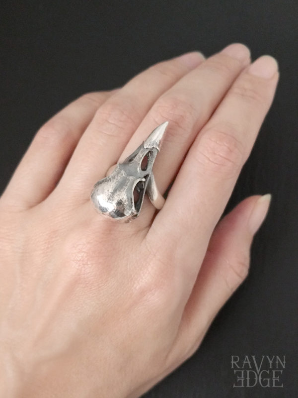 Raven skull ring in sterling silver